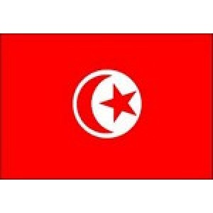 Αυτοκόλλητο σημαία Τυνησίας